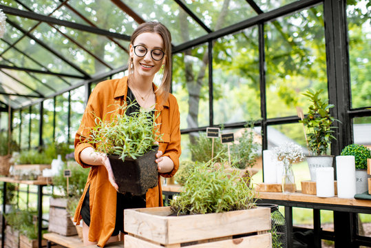 Portrait of a young woman taking care of plants, growing herbs and flowers in the beautiful greenhouse