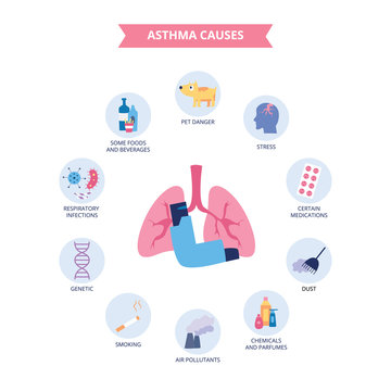 Infographics of bronchial asthma causes flat cartoon style