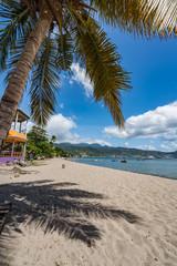 Purple Turtle Beach Views around the caribbean island of Dominica West indies