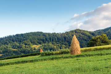haystacks on a grassy hill. traditional rural scenery, carpathian countryside in mountains. calm sunny forenoon with cloud on the sky