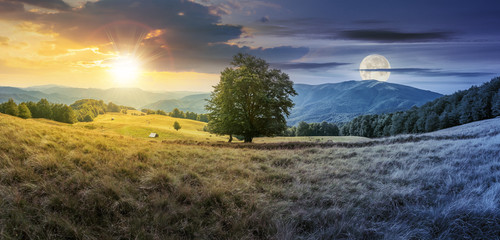 Foto op Aluminium Grijze traf. day and night time change concept above the beech tree on the meadow in mountains. landscape with sun and moon. wonderful summer scenery of carpathian countryside. mountain ridge in the distance.