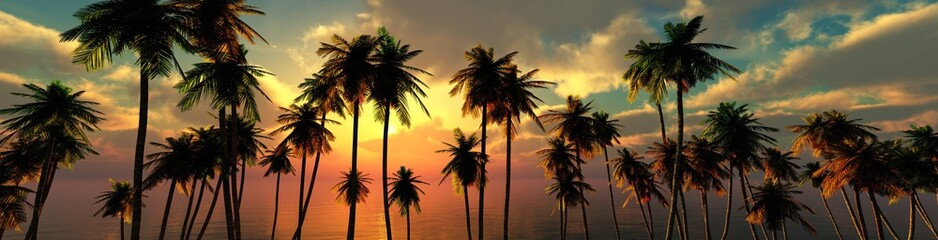 Obraz palm trees at sunset, panorama of the beach with palm trees at sunrise - fototapety do salonu