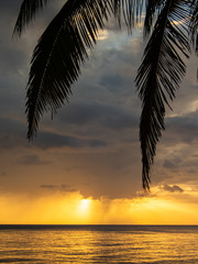 Wall Murals Sunset Views around the caribbean island of Dominica West indies