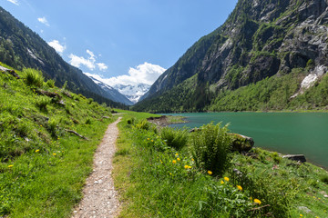 Wall Mural - Path through spring mountains landscape near alpine lake. Stillup, Stillup Lake, Austria, Tyrol