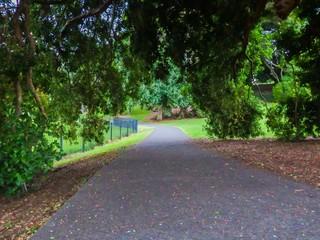 Gravel garden path under trees