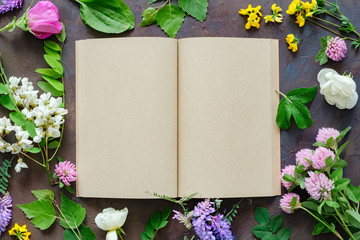 Medicinal herbs and plants, open blank paper book. Top view.