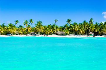 Foto auf AluDibond Strand Tropical