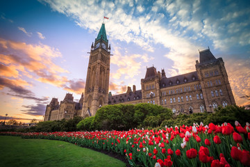 View of Canada Parliament building in Ottawa during tulip festival
