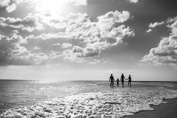 Happy big family on the shore. Back view. Large family holding hands and standing near the sea. summer vacation.  Black and white photo
