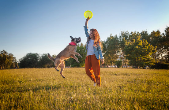 Young girl playing dog with a frisbee in the summer park. Dog is flying
