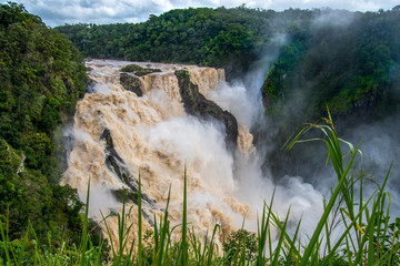 Fototapeta Huge tropical waterfall surrounded by rainforest on the Barron river in Queensland, Australia obraz