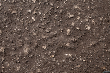 Stony road surface texture. Beachy roadway surface. Drive full of stones. Ironbound of forest drive-way. Rocky skin of timber drive. Stony ride idle screen. Background image of tophaceous footpath.