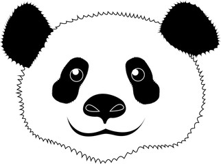 vector drawing of a Panda on white background