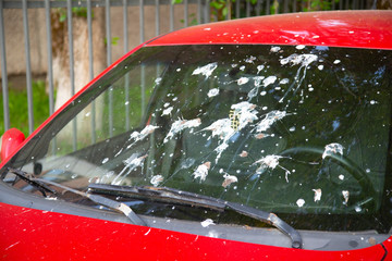 The windshield of the car is stained with feces of birds.