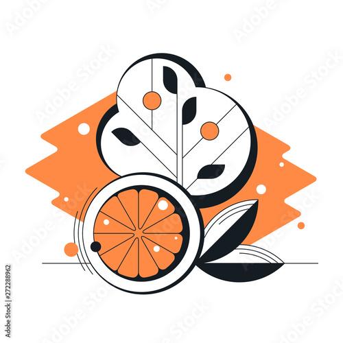Abstract Geometrical Orange Citrus Vector Flat Fruit
