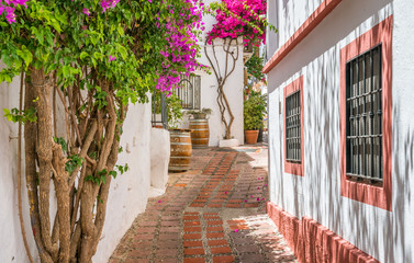 Picturesque sight in Marbella old town, province of Malaga, Spain. Fototapete