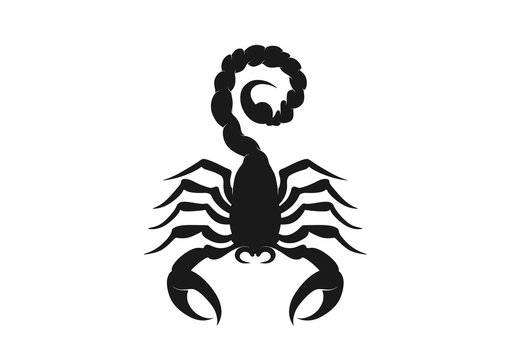 scorpion icon. isolated vector silhouette image of wild animal