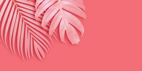Wall Mural - Tropical leaves banner background with copy space Minimal summer