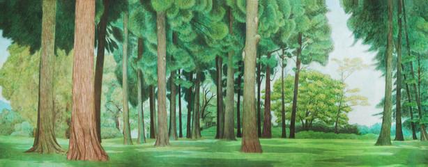 杉林 風景 背景 素材
