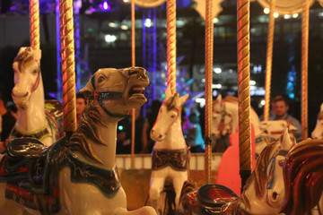 Carousel or Merry Go Round Horses