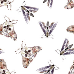 Watercolor seamless pattern with moths. Dark mystical colors