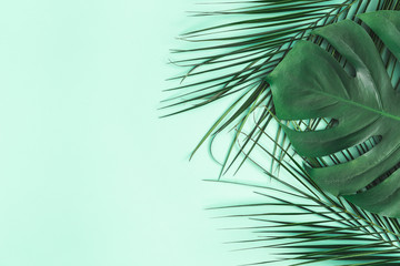 Summer composition. Palm leaves on mint background. Summer concept. Flat lay, top view, copy space