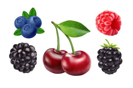 Blackberries cherry, blueberries and raspberries. 3d vector icon set. Realistic illustration