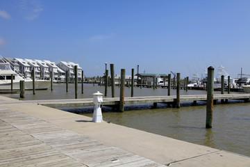 Cypress Cove Marina in Venice with Lodges, Louisiana