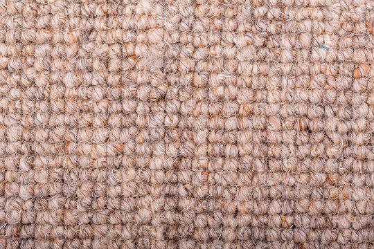 Loop pile wool carpet in beige