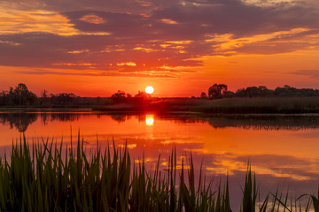 Poster Zalm Sunset above the pond or lake with cloudy sky at summer and water reflection.