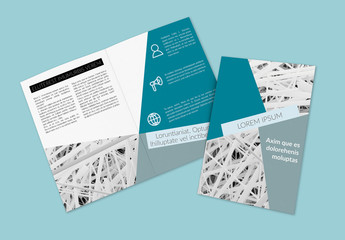 Blue and White Bifold Brochure