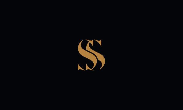 SS logo design template vector illustration
