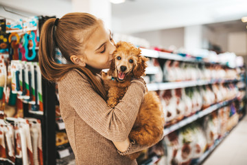 Cute girl with her poodle puppy in pet shop.
