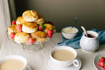Afternoon tea of scones with strawberry jam and clotted cream wi