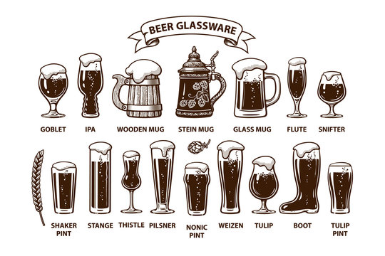 Beer glassware guide. Various types of beer glasses and mugs.. Design elements for brewers festival, bar, pub decoration.