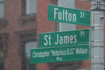 """The new Christopher """"Notorious B.I.G"""" Wallace way is seen in the Brooklyn borough of New York"""