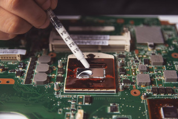 Wall Mural - Technician applying thermal paste with syringe on the CPU processor on motherboard laptop