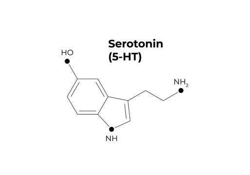 Vector hormones minimalistic banner template. Seratonin (5-HT) structure black isolated on white background.. Hormone of happines feeling, depression. Design for science, education, presentation.