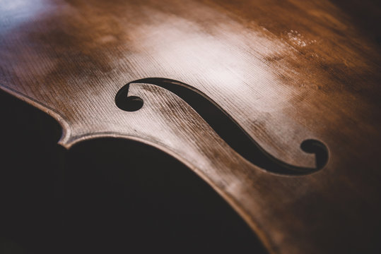 double bass in unvarnished construction