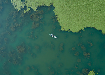 Paddlesurf in the lake