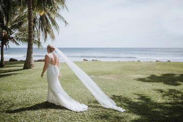 Bride Walking with long, Flowing Veil