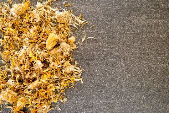 Dried yellow Arnica Flowers  on gray / grey slate background