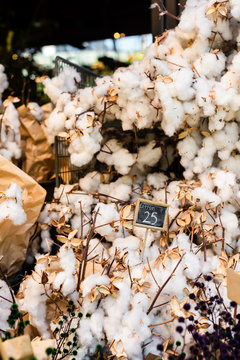 cotton flowers in a market stall