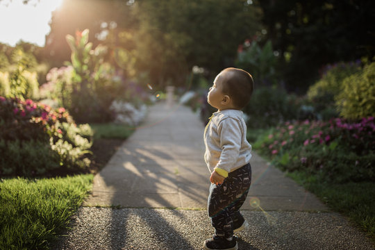 Mixed Baby Playing In The Park