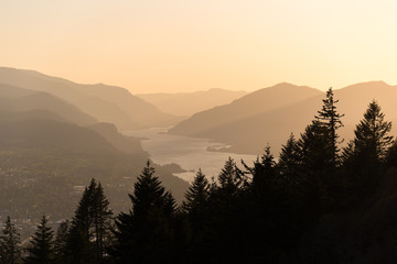 Silhouetted evergreen trees and Columbia River flowing through layers of mountains in the Columbia River Gorge at golden hour