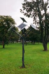 Solar powered street lamp in park between trees