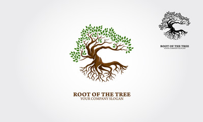 Fototapeta Root of the Tree logo illustrating a tree roots, branches. Excellent logo template for landscape, gardening, business or in numerous fields related to nature. obraz