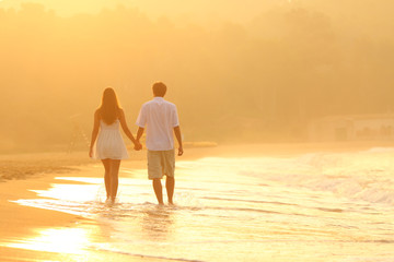 Back view of a couple at sunset walking on the beach