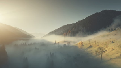Epic Chain Hill Forest Slope Landscape Aerial View. Misty Evergreen Forest Mountain Scenery Wildlife Habitat Sight. Thick Fog Steep Rock Gorge Clean Ecology Concept Drone Flight