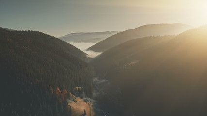 Panoramic Hill Chain Sunrise Sight Aerial View. Highland Dawn Misty Wildlife Habitat Pine Coniferous Landscape Overview. Scenic Forest Surface Sight Clean Ecology Concept Drone Flight